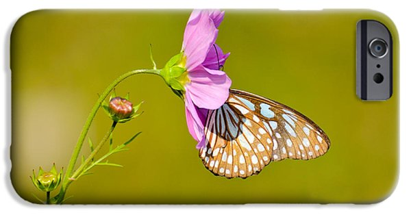 Bonding iPhone Cases - Togetherness iPhone Case by Fotosas Photography