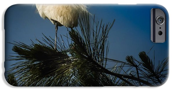 Stork iPhone Cases - ON TOP of the WORLD iPhone Case by Karen Wiles