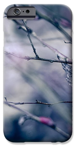 torn and tattered iPhone Case by Shane Holsclaw