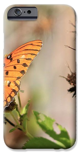 Torn Wing and Dry Flowers iPhone Case by Cyril Maza
