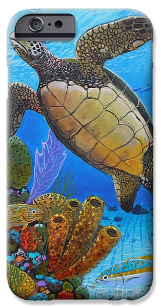 Kemp iPhone Cases - Tortuga iPhone Case by Carey Chen