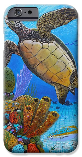 Islamorada iPhone Cases - Tortuga iPhone Case by Carey Chen