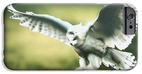 Airbrush Drawings iPhone Cases - Touch down iPhone Case by Tina Marie Appleby