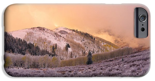 Pines iPhone Cases - Touch of Winter iPhone Case by Chad Dutson