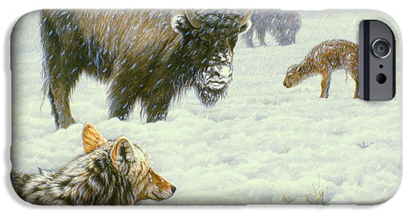 Bison iPhone Cases - Tough Day in May iPhone Case by Paul Krapf