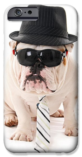 Black Dog iPhone Cases - Tough Dog iPhone Case by Jt PhotoDesign
