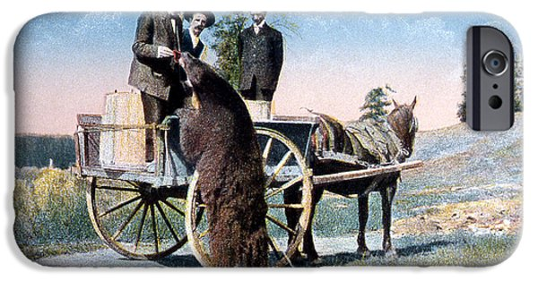 Horse And Buggy iPhone Cases - Tourist Feeding Bear Yellowstone Np iPhone Case by NPS Photo Frank J Haynes