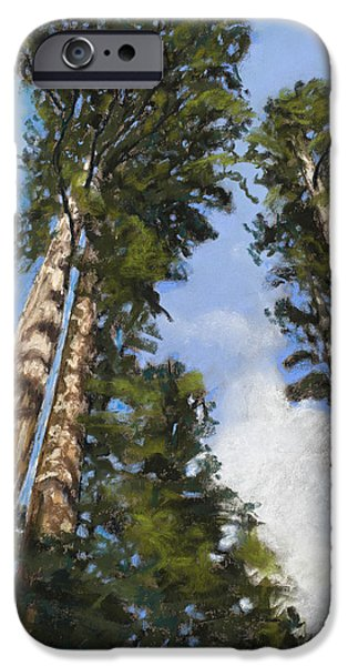 National Pastels iPhone Cases - Towering Sequoias iPhone Case by Mary Benke
