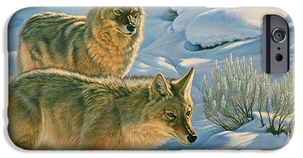Coyote iPhone Cases - Trackers iPhone Case by Paul Krapf