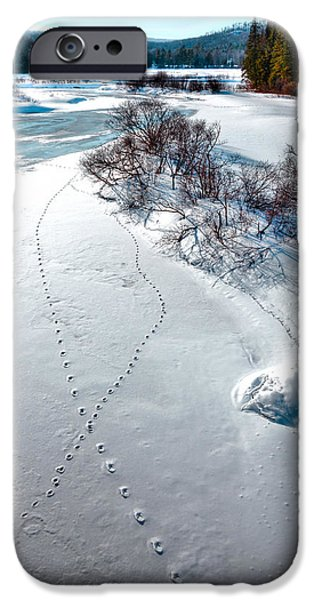 Snow Scene iPhone Cases - Tracks on the Frozen Moose River - Old Forge New York iPhone Case by David Patterson