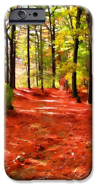 Walden Pond iPhone Cases - Trails at Walden Pond iPhone Case by Tom Christiano