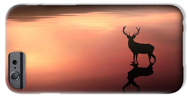 Deer Digital iPhone Cases - Tranquil Dawn iPhone Case by Jennifer Woodward
