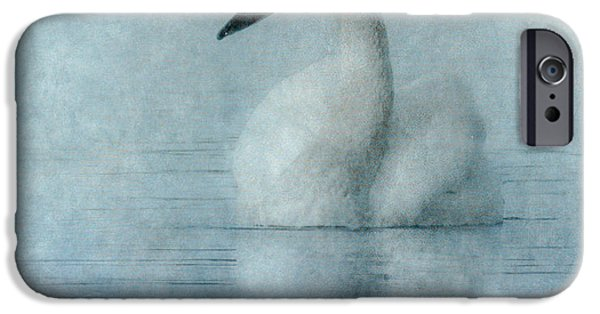 Swans... iPhone Cases - Tranquility iPhone Case by Angie Vogel