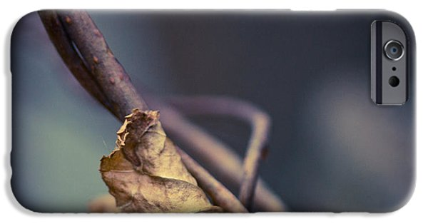 Vine Leaves iPhone Cases - Trapped iPhone Case by Shane Holsclaw