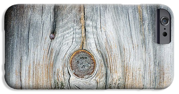 Mural Mixed Media iPhone Cases - Tree Abstractions in neutral gray and beige iPhone Case by Anahi DeCanio