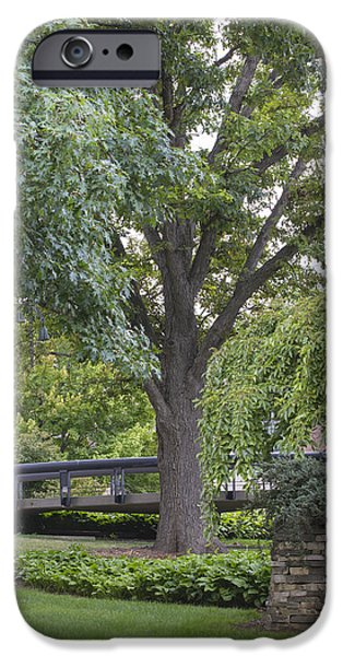 The Nature Center iPhone Cases - Tree and bridge at Wharton Center iPhone Case by John McGraw