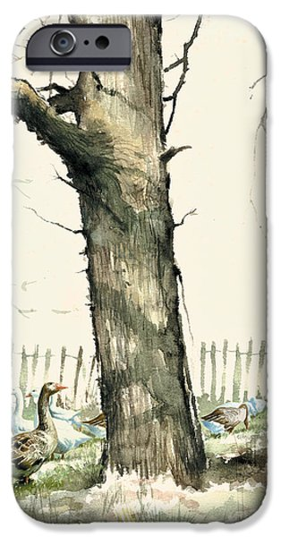 Rural iPhone Cases - Tree and Geese iPhone Case by Steve Crisp