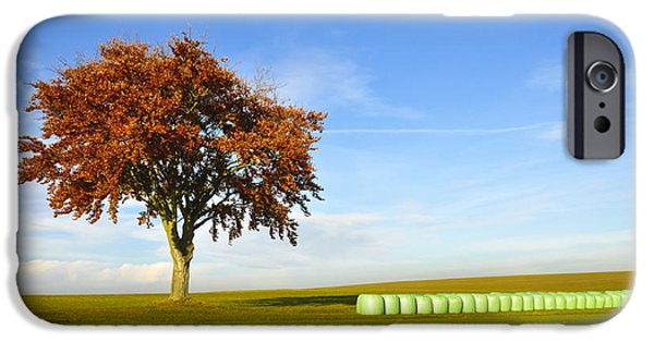 Hay Bales iPhone Cases - Tree and hay bales iPhone Case by Aged Pixel