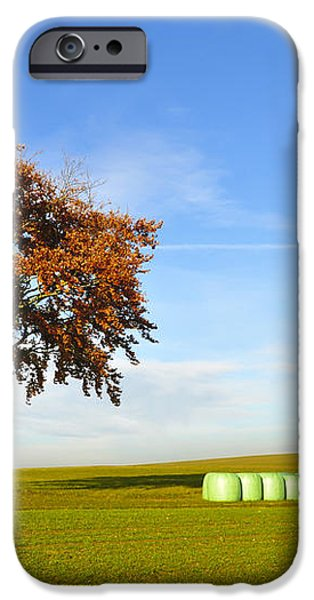 Tree and hay bales iPhone Case by Aged Pixel