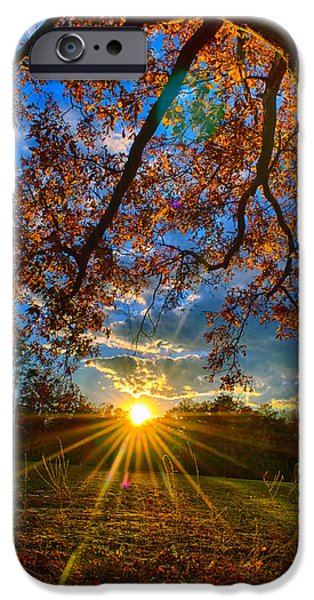 No People Pyrography iPhone Cases - Tree and sunset iPhone Case by Vincent  Dale