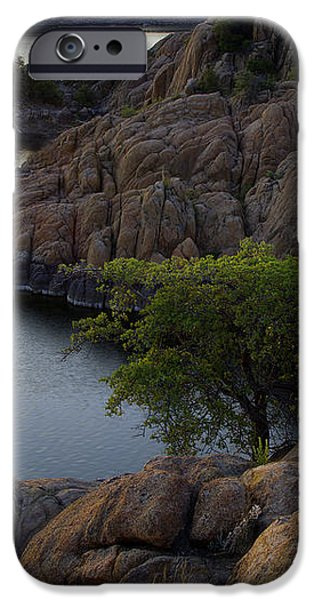 Tree at Sunset at the Granite Dells Arizona iPhone Case by Dave Dilli