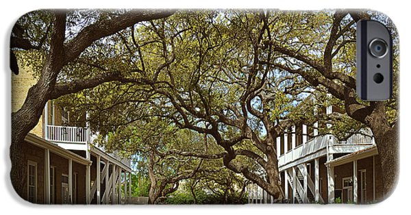 Interior Scene iPhone Cases - Tree canopy in San Antonio TX iPhone Case by Christine Till