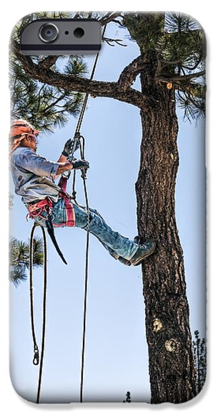 Work Tool iPhone Cases - Tree Cutter iPhone Case by Maria Coulson