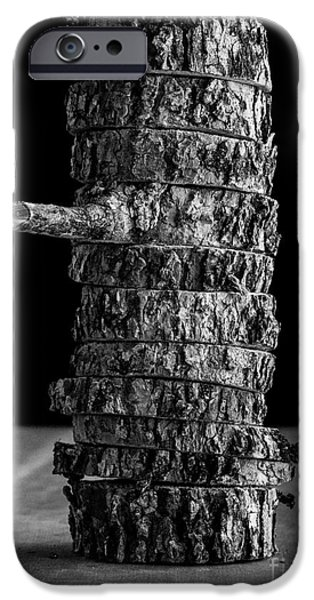 Cut iPhone Cases - Tree Deconstructed II iPhone Case by Edward Fielding