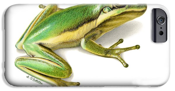 Animal Drawings iPhone Cases - Green Tree Frog iPhone Case by Sarah Batalka