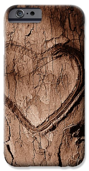 Floral Digital Digital Pyrography iPhone Cases - Tree Heart iPhone Case by Nathan Little