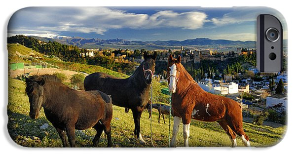 The Horse iPhone Cases - Tree horses The alhambra and Granada iPhone Case by Guido Montanes Castillo