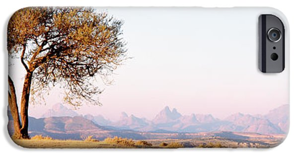 Ethiopia iPhone Cases - Tree In A Field With A Mountain Range iPhone Case by Panoramic Images