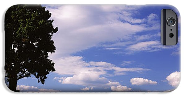 Horizon Over Land iPhone Cases - Tree In A Field With Woman Walking iPhone Case by Panoramic Images