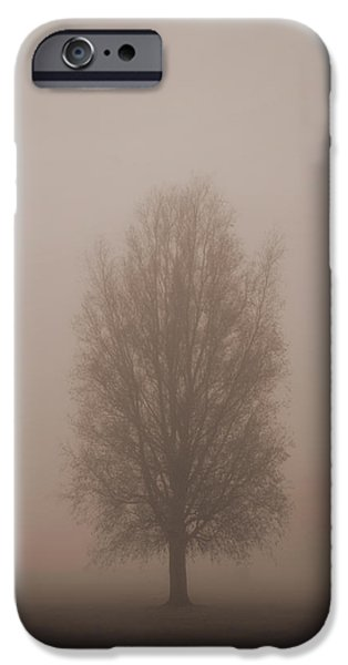 Steadfast iPhone Cases - Tree in mist iPhone Case by Andrew James