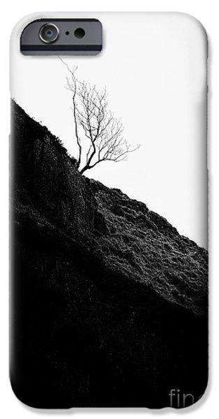 Tree in mist ii iPhone Case by John Farnan