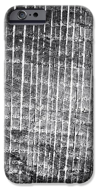 Tree Lines iPhone Case by John Rizzuto