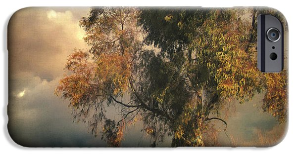 Poetic iPhone Cases - Tree of Confusion iPhone Case by Taylan Soyturk