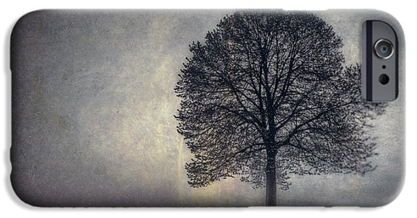 Strength Photographs iPhone Cases - Tree of Life iPhone Case by Scott Norris