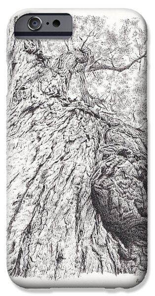 Tree Roots Drawings iPhone Cases - Tree pen drawing 2 iPhone Case by Heidi Vormer