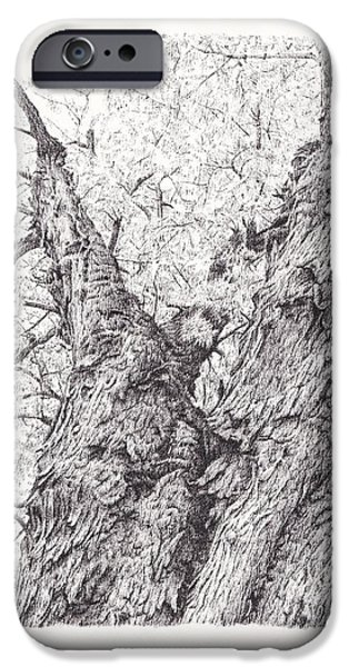 Tree Roots Drawings iPhone Cases - Tree pen drawing 3 iPhone Case by Heidi Vormer