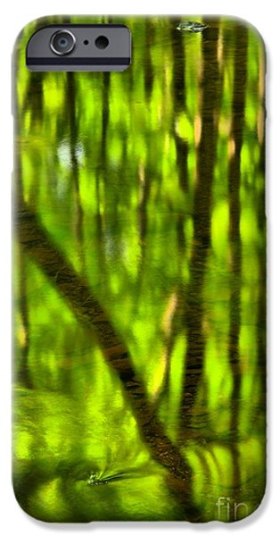 Tree Reflections iPhone Case by Adam Jewell