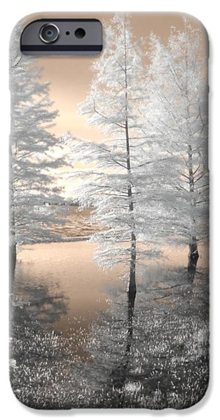 Tree Reflections iPhone Case by Jane Linders
