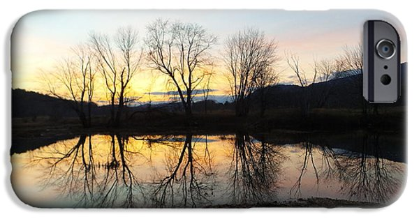 Androscoggin iPhone Cases - Tree Reflections Landscape iPhone Case by Mike Breau