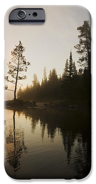 Dave iPhone Cases - Tree Silhouettes By Rushing River iPhone Case by Dave Reede