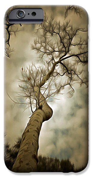 Cloudy Day Paintings iPhone Cases - Tree Top In The Clouds iPhone Case by Barbara Snyder
