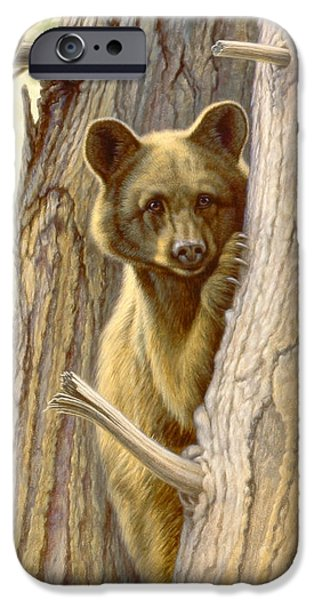 Black Bear iPhone Cases - Treed iPhone Case by Paul Krapf