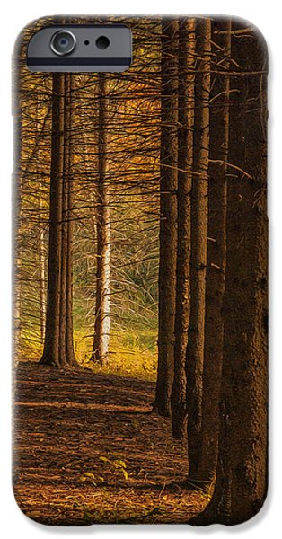 Electronic iPhone Cases - Treeline  iPhone Case by Jack Zulli