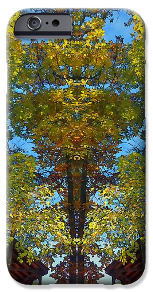 Trees Alive iPhone Case by Susan Leggett