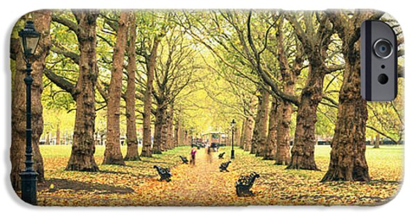 Leaf Change iPhone Cases - Trees Along A Footpath In A Park, Green iPhone Case by Panoramic Images