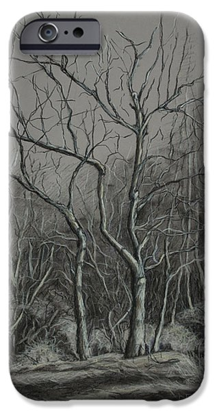 Trees Along the Greenway iPhone Case by Janet Felts